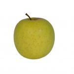obsthof-suhr-apfelsorte-goldendelicious